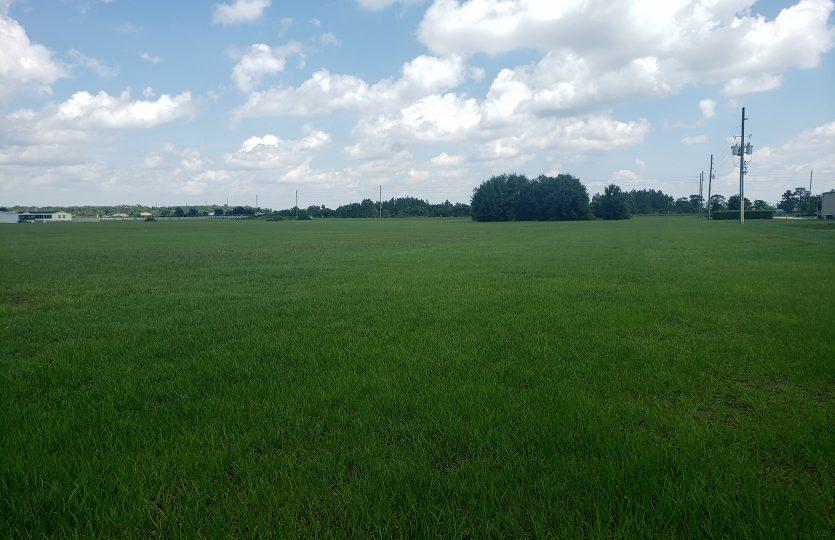 Covington Land 1