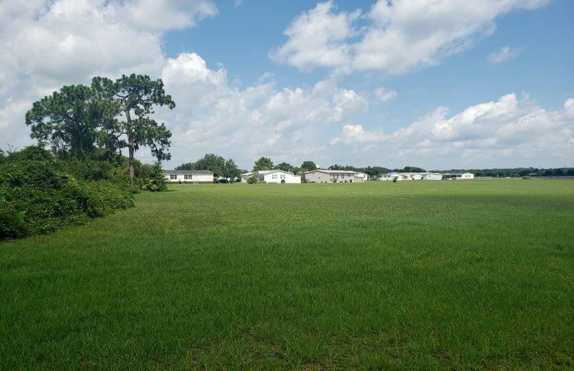 Covington Land 2